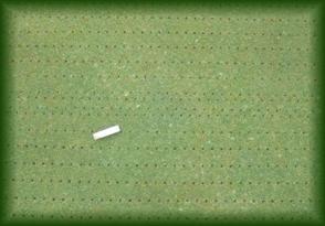 Prato verde manutenzione campi da golf microbucatura for Prato senza manutenzione